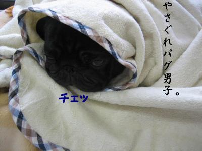 Img_8476_2