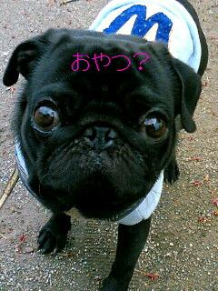 やんだ(*^_^*)
