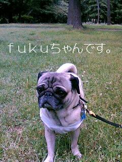 会えました〜fukuちゃん〜