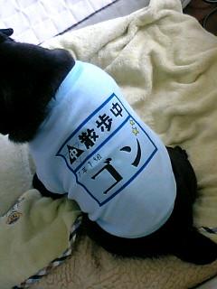 カァチャンご満悦~ヽ('ー`)ノ~